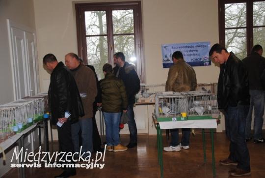 XIX Okręgowa Wystawa Gołębi Pocztowych